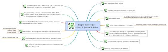 Project Sponsor(s) - Roles & Responsibilities