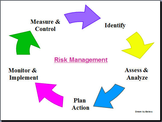 Risk Management Processes